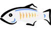 GlassFish Monitoring
