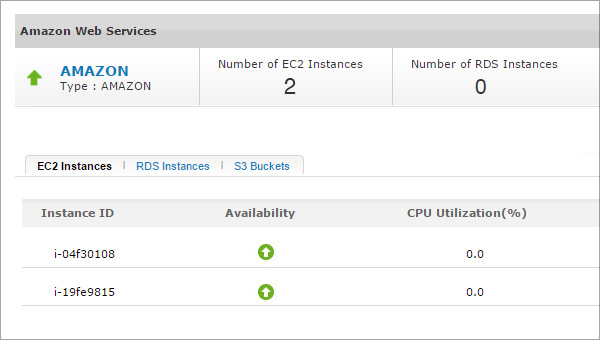Amazon EC2 and RDS Instances Monitoring